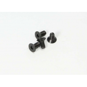 Flat Head M3x6mm Hex Screw (1vnt.)