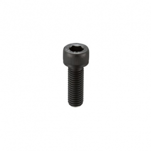 Socket Head M3x6 Hex Screw (1 vnt.)