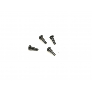 bz-444 C-hub screws 4pcs